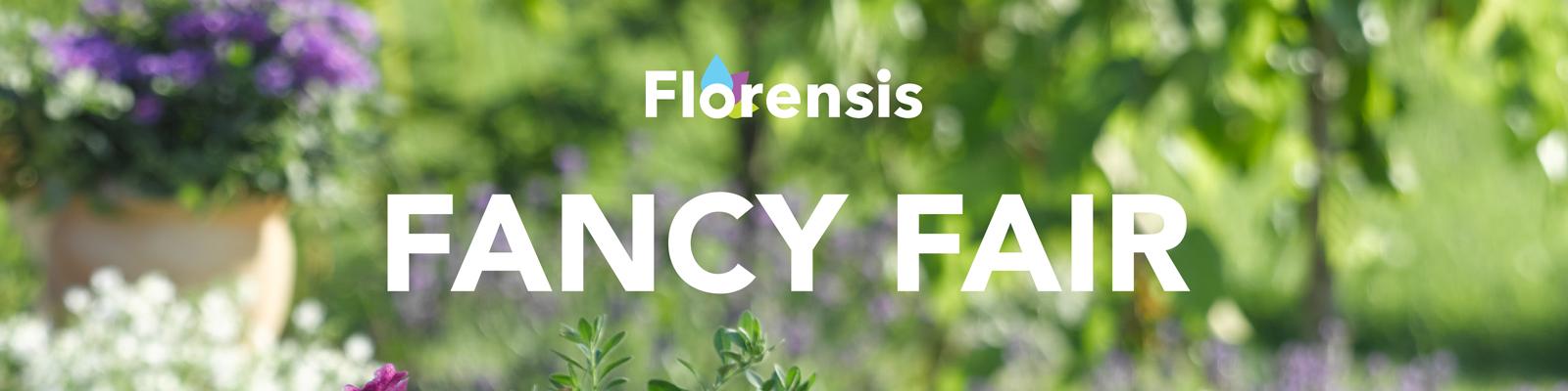 florensis-fancy-fair-banner